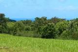 Kaumualii Hwy - Photo 4