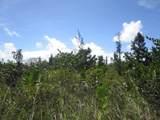 1ST AVE (AKALA) - Photo 1