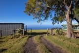 61-3047 Kohala Mountain Rd - Photo 7