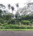 Nehu St - Photo 2