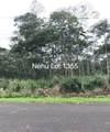 Nehu St - Photo 3