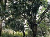 15-1518 20TH AVE (MELIA) - Photo 28