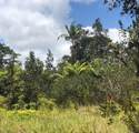 Koloa Maoli Rd (Road 9) - Photo 9