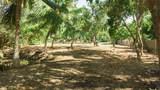 69-1819 Puako Beach Dr - Photo 8