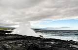 95-4667 Hawaii Belt Rd - Photo 29