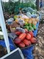 14-252 Papaya Farms Rd - Photo 14
