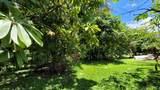 14-252 Papaya Farms Rd - Photo 18