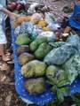 14-252 Papaya Farms Rd - Photo 20