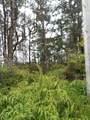 Plumeria Dr - Photo 5