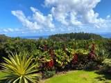 41-467 Hawaii Belt Rd - Photo 3
