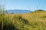 West Waikoekoe - Photo 8