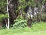 Pukeawe Cir - Photo 2