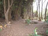 Pukeawe Cir - Photo 3