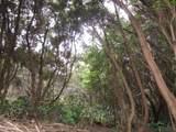 Pukeawe Cir - Photo 4
