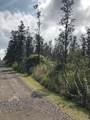 16-1122 Opeapea Rd (Road 7) - Photo 1