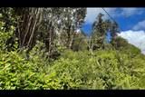 Opeapea Rd (Road 7) - Photo 12