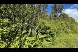 Opeapea Rd (Road 7) - Photo 16