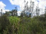 Silversword Dr - Photo 1