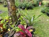 14-3473 Mauna Kea Rd - Photo 11