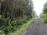 16-1775 Uau Rd (Road 5) - Photo 1