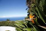 76-5989 Mamalahoa Hwy - Photo 4