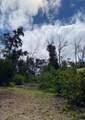 92-8764 Lehua Ln - Photo 19