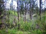 Mokuna St - Photo 1