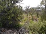 Plumeria Ln - Photo 5
