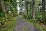 16-2065 Uhini Ana Rd (Road 1) - Photo 3