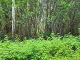 Molokai St - Photo 1