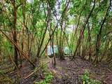 Molokai St - Photo 2