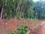 Kahumoku Rd - Photo 9