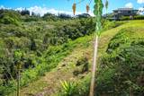 5210 Hanalei Plant Rd - Photo 13