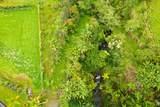 36-3352 Kuwili Lani Place - Photo 15