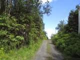 Hopue Rd (Road 3) - Photo 3