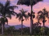 2611 Kiahuna Plantation Dr - Photo 29
