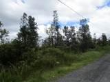 Ala Naulani Rd - Photo 2