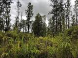 Hopue Rd (Road 3) - Photo 1