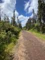 Opeapea Rd (Road 7) - Photo 2