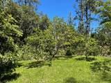 16-1315 Opeapea Rd (Road 7) - Photo 29