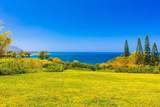 3700 Kilauea Rd - Photo 1