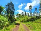 16-2146 Koloa Maoli Rd (Road 9) - Photo 11