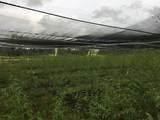 Kahakai Blvd - Photo 6