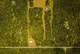 11-2141 Jungle King Ave - Photo 1