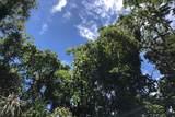 Puni Lani Lp - Photo 1