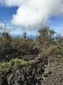 King Kamehameha Blvd - Photo 3
