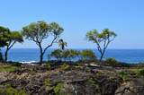 81-6709 Kauaiki St - Photo 1