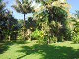 4901 Hanalei Plantation Rd - Photo 16