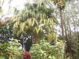 4901 Hanalei Plantation Rd - Photo 18