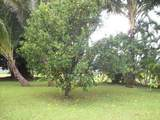 4901 Hanalei Plantation Rd - Photo 26